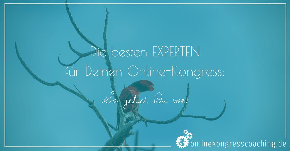 Wie Du Die Besten Experten Für Deinen Online Kongress Gewinnst